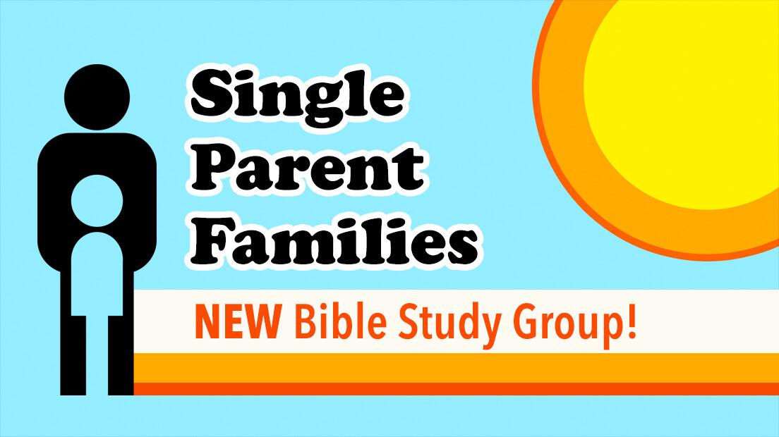 Single Parent Families Group Study